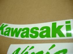 Kawasaki ZX10R Ninja lime green full decals set