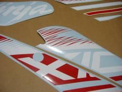 Kawasaki ZX10R 2016 Ninja red graphics