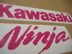 Kawasaki ZX10R Ninja pink customized logo decals