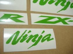 Kawasaki ZX10R Ninja bright green custom graphics