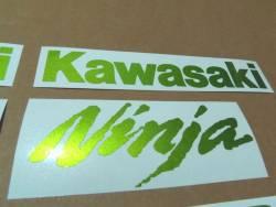 Kawasaki ZX10R Ninja metallic green custom stickers