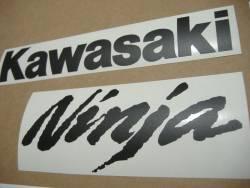 Kawasaki ZX10R stealth matte black decals