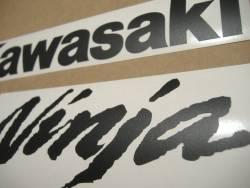 Kawasaki ZX10R matte black logo decals labels