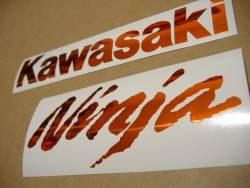 Kawasaki ZX-10R Ninja chrome orange logo graphics