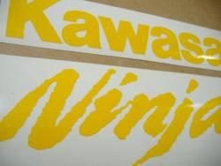 Kawasaki ZX10R 1000 duck yellow logo graphics
