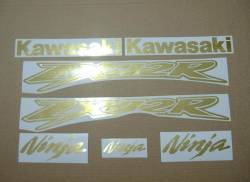 Kawasaki ZX12R Ninja brushed golden decals