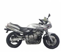 Honda CB600S Hornet S 2003-2004 silver gray graphics