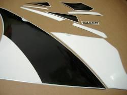 Kawasaki ZX-6R Ninja 2001 J1 silver replica stickers