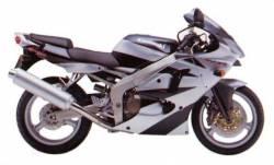 Kawasaki ZX-6R Ninja 2000-2001 J1 grey graphics kit