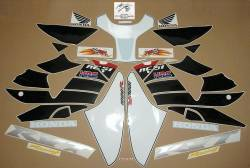 Honda RVT1000R 2004 Nicky Hayden edition replica decal kit