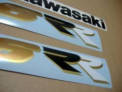 Kawasaki ZX6RR ninja race replica 2003 green decal set