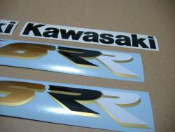 Kawasaki ZX6RR ninja race replica 2003 green graphics