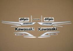 Kawasaki ZX6R 636 ninja 2013 reproduction stickers set