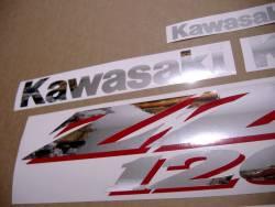 Kawasaki ZZR 1200 silver 2002 replacement graphics
