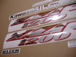 Adhesives for Kawasaki ZZR 1200 silver 2002 model