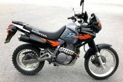 Graphics for Honda Dominator NX 650 1997 orange