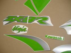 Lime green customized graphics for Kawasaki ZX-9R