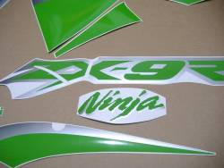 Kawasaki ZX9R ninja 2002-2003 custom adhesives set