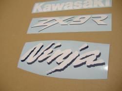 Kawasaki ZX-9R 1999 green stickers set