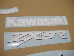 Kawasaki ZX-9R 1999 green adhesives set