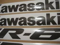 Kawasaki ER-6F 2007 650 silver logo graphics