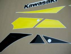 Kawasaki ZX9R 2002 silver labels graphics