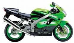 Kawasaki ZX9R 2002 Ninja green decals