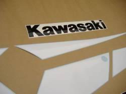Kawasaki ZX9R 2002 Ninja gold stickers