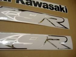 Kawasaki ZX9R 2003 Ninja grey stickers