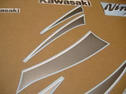 Kawasaki 250 R 2007 red labels graphics