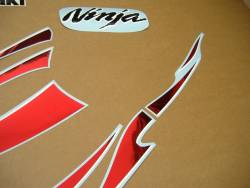 Kawasaki 250 R 2007 silver labels graphics