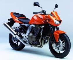 Kawasaki Z750 2006 complete sticker kit