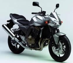 Kawasaki Z750 2006 silver logo graphics