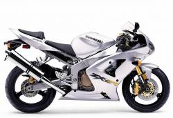 Kawasaki ZX 6R 2003 silver full decals kit
