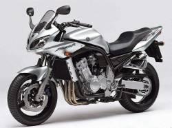 Yamaha FZS 1000 2004 silver stickers set