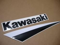 Kawasaki ZX-9R 2003 Ninja green logo graphics