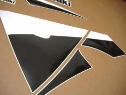 Kawasaki ZX 9R 2003 green stickers kit