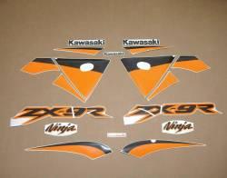 Kawasaki ZX 9R 2003 silver labels graphics