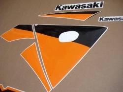 Kawasaki ZX9R 2003 silver adhesives set