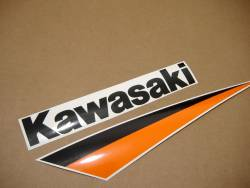 Kawasaki ZX9R 2003 silver stickers set