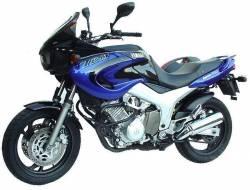 Yamaha TDM 850 2001 4TX blue decals