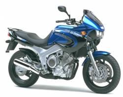 Yamaha TDM 850 Yamaha TDM 850 2000 blue stickers kit