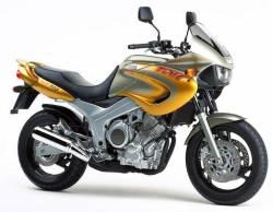 Yamaha TDM 850 1999 4TX gold decals kit