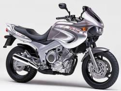 Yamaha TDM 2000 4TX silver logo graphics