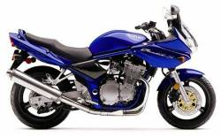 Suzuki GSF 600S 2002 blue stickers kit