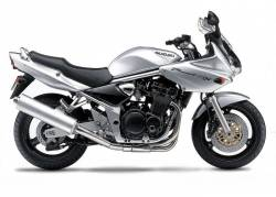 Suzuki GSF 1200S 2001 silver decals kit
