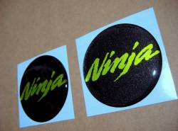 Kawasaki Ninja 3D silicone decals